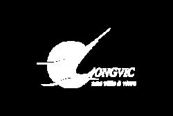 Longvic
